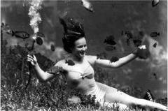 Photo from the Florida archives showing Weeki Wachee underwater mermaid in a very healthy ecosystem of fish and grasses.