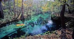 Ichetucknee Springs Run in its wonderful glory showing a rafter gently moving downstream on the blue waters.